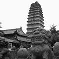 Lion And Pagoda by Angela Siener