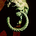Lion Door Knocker In Venice by Michael Henderson