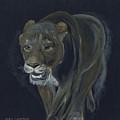 Lion Female by Claudia Luethi alias Abdelghafar
