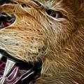 Lion Fractal by Shane Bechler