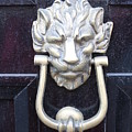 Lion Head Door Knocker by Lauri Novak