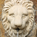 Lion Head Fountain by Pamela Critchlow