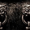 Lion Head Handle by Venetta Archer