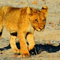 Lion - Id 16235-220310-4716 by S Lurk