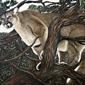 Lion In The Tree by Angie Cockle