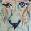 Lion  by Jamey Balester