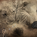 Lion Love Big And Small by Maria Astedt