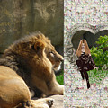 Lion Love by RiaL Treasures