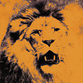 Lion Pop Art by Angela Doelling AD DESIGN Photo and PhotoArt
