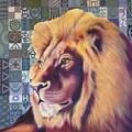 Lion Pride by Carrie Niederberger
