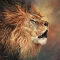 Lion Roar Profile by David Stribbling