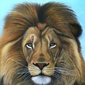 Lion - The Majesty by Vishvesh Tadsare