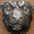 Lion by Vladimir Kozma