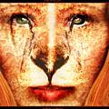 Lioness by Robert  Adelman