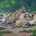 Lioness With Cubs by Patty Strubinger