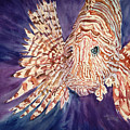 Lionfish by Tanya L. Haynes - Printscapes