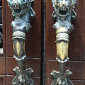 Lions Doorhandle by Christiane Schulze Art And Photography
