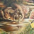 Blaa Kattproduksjoner           Watch  Out For  Yellow  Bird  by Sigrid Tune