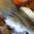 Liquid Gold by Dianne Cowen