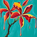 Liquidia Plumeria by Chris  Fifty-one