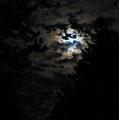 Lisas Wildlife Moons by September  Stone