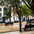 Lisbon High Park by Rick Bragan