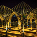Lisbon Train Station At Night by Mary Machare