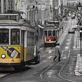 Lisbon Trams by Howard Ferrier