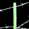 Lit Candle Surrounded By Barbed Wire by Sami Sarkis