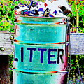 Litter by Colleen Kammerer