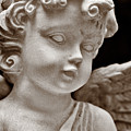 Little Angel - Sepia by Christopher Holmes