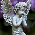 Little Angel by Marc Huebner