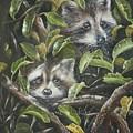 Little Bandits by Kim Westberry