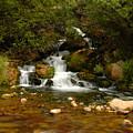 Little Big Creek by Scott Read