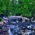 Little Bridge - Japanese Garden by Bill Cannon