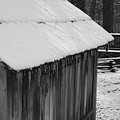 Little Brown Shed by Eric Liller