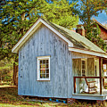 Little Cabin In The Country Pine Barrens Of New Jersey by Geraldine Scull