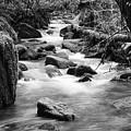 Little Creek 3 Bw by Bob Christopher