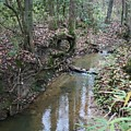 Little Creek by Ryan Johnson