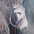 Little Donkey-glin Fair by Pauline Sharp