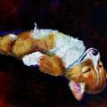 Little Dreamer by Lyn Cook