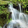 Little Falls by D Hackett