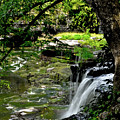 Little Falls by Michelle Rollins