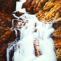 Little Firehole Falls by Teri Rosario