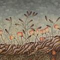 Little Gods by Judy Henninger