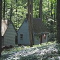 Little House In The Woods by Jost Houk