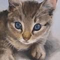 Little Kitty by Jindra Noewi