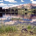 Little Molas Lake Colorado by Greg Taylor