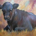 Little Moo  Angus Calf Painting Southwest Art by Kim Corpany