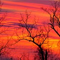 Little More Color At Sunset by Donald C Morgan